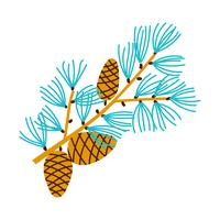 Christmas branch of pine with cones.  vector