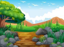 Escena de la naturaleza con colinas y senderos.