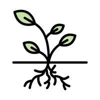 Icona di vettore di radice