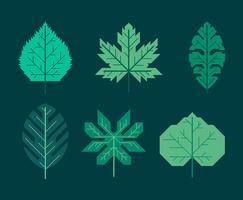 Conjunto de clipart de folhas verdes