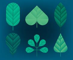 Conjunto de imágenes de hojas verdes