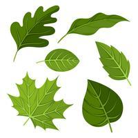 Groene bladeren Clipart instellen Vector