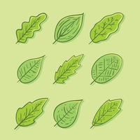 Hand Drawn Green Leaves Collection Vector