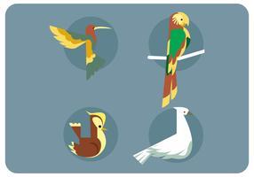 Fågelarter Set Vector