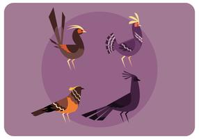 A Set of Birds Standing Vector