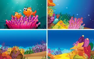 Cenas subaquáticas