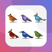 Oiseau plat coloré avec collection de clipart Vector contour