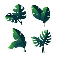 Tropical Green Leaves Clipart Set Vector