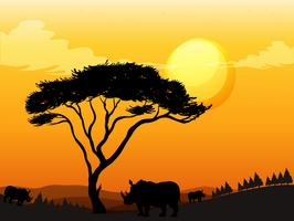Silhouette scene with rhino in the field vector