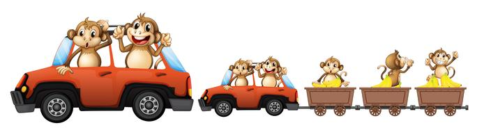 Monkey family on the car