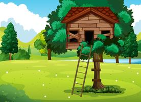 Vecchia casa sull'albero nel parco