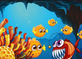 A group of puffer fishes and a scary piranha inside the cave