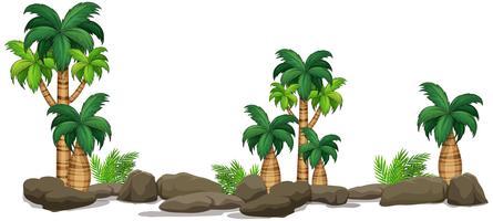Élément de plante nature isolée