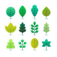 Green Leaves Set Vector