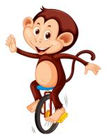 A monkey riding unicycle