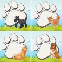Frame design with domestic dogs vector