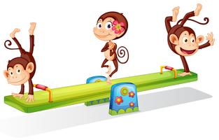 Three playful monkeys playing with the seesaw