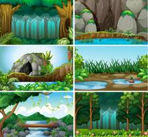 Set of forest background