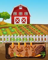 Una familia feliz del conejo en la granja