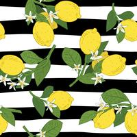 Seamless of branches with lemons, green leaves and flowers on black and white liniar pattern. Citrus fruits background. Vector illustration