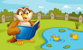 An owl reading near the pond