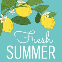 Tropical citrus lemon fruits bright summer card. Poster with lemons, green leaves and flowers on turquoise blue. Summer colorful background.