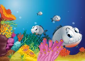 En skola av läskiga grå fiskar