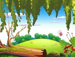 A nature forest background vector