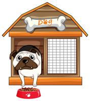 Pug dog in dog house