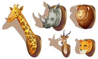 Têtes d'animaux en peluche
