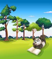 A panda lying at the grass while reading a book