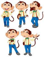 Cinq singes portant un jean bleu