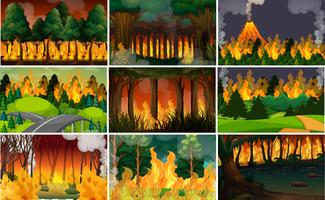 Set of wild fire background