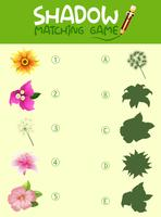 Modèle de jeu correspondant à l'ombre des fleurs