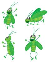 En fyra gräshoppor