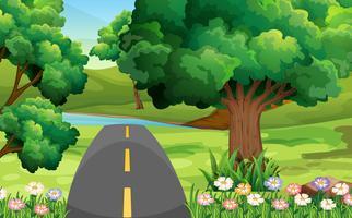 Carretera vacía en el parque verde