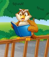 Um, coruja, lendo um livro azul
