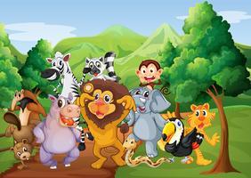 En grupp djur vid djungeln