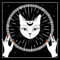 White cat face with moon on night sky with ornamental round frame. Hands with rings.