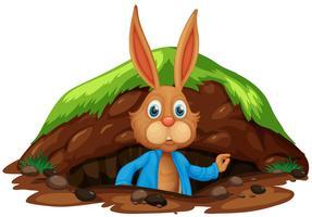 Ein süßes Kaninchen, das ein Loch verlässt