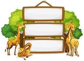 Girafa na placa de madeira em branco