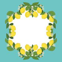 Card template with text. Tropical citrus lemon fruits frame on vintage turquoise blue background.