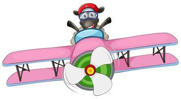 Ett får rider flygplan