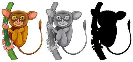 Set if tarsier character