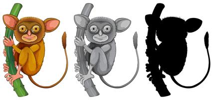 Set if tarsier character