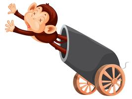 Dead monkey and cannon vector
