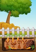 scena underground con conigli