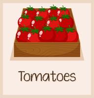 Un tomate en la caja. vector