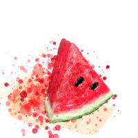 Red watercolor watermelon on vector art.