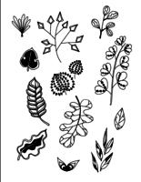 Conjunto de Doodle hojas mano dibujar vector